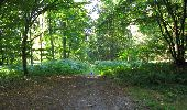 Randonnée Marche LONGPONT - en forêt de Retz_39_Longpont_Villers-Cotterets_AR - Photo 226