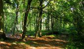 Randonnée Marche LONGPONT - en forêt de Retz_39_Longpont_Villers-Cotterets_AR - Photo 38