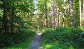 Randonnée Marche LONGPONT - en forêt de Retz_39_Longpont_Villers-Cotterets_AR - Photo 227