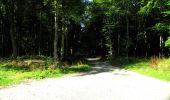 Randonnée Marche LONGPONT - en forêt de Retz_39_Longpont_Villers-Cotterets_AR - Photo 212
