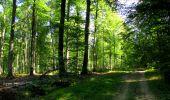 Randonnée Marche LONGPONT - en forêt de Retz_39_Longpont_Villers-Cotterets_AR - Photo 147