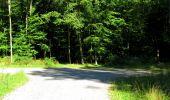 Randonnée Marche LONGPONT - en forêt de Retz_39_Longpont_Villers-Cotterets_AR - Photo 211