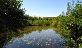 Randonnée Marche LONGPONT - en forêt de Retz_39_Longpont_Villers-Cotterets_AR - Photo 202