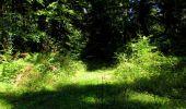 Randonnée Marche LONGPONT - en forêt de Retz_39_Longpont_Villers-Cotterets_AR - Photo 194