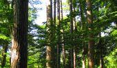 Randonnée Marche LONGPONT - en forêt de Retz_39_Longpont_Villers-Cotterets_AR - Photo 93
