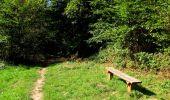 Randonnée Marche LONGPONT - en forêt de Retz_39_Longpont_Villers-Cotterets_AR - Photo 87