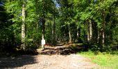 Randonnée Marche LONGPONT - en forêt de Retz_39_Longpont_Villers-Cotterets_AR - Photo 150