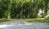 Randonnée Marche LONGPONT - en forêt de Retz_39_Longpont_Villers-Cotterets_AR - Photo 209