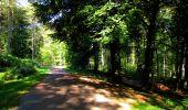 Randonnée Marche LONGPONT - en forêt de Retz_39_Longpont_Villers-Cotterets_AR - Photo 37