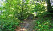 Randonnée Marche LONGPONT - en forêt de Retz_39_Longpont_Villers-Cotterets_AR - Photo 129