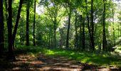 Randonnée Marche LONGPONT - en forêt de Retz_39_Longpont_Villers-Cotterets_AR - Photo 56