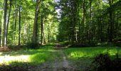 Randonnée Marche LONGPONT - en forêt de Retz_39_Longpont_Villers-Cotterets_AR - Photo 141