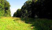 Randonnée Marche LONGPONT - en forêt de Retz_39_Longpont_Villers-Cotterets_AR - Photo 86