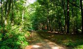 Randonnée Marche LONGPONT - en forêt de Retz_39_Longpont_Villers-Cotterets_AR - Photo 138