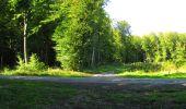 Randonnée Marche LONGPONT - en forêt de Retz_39_Longpont_Villers-Cotterets_AR - Photo 221