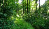 Randonnée Marche LONGPONT - en forêt de Retz_39_Longpont_Villers-Cotterets_AR - Photo 43