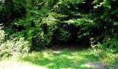 Randonnée Marche LONGPONT - en forêt de Retz_39_Longpont_Villers-Cotterets_AR - Photo 176