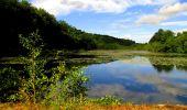 Randonnée Marche LONGPONT - en forêt de Retz_39_Longpont_Villers-Cotterets_AR - Photo 198