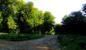 Randonnée Marche LONGPONT - en forêt de Retz_39_Longpont_Villers-Cotterets_AR - Photo 28
