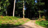 Randonnée Marche LONGPONT - en forêt de Retz_39_Longpont_Villers-Cotterets_AR - Photo 70