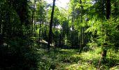 Randonnée Marche LONGPONT - en forêt de Retz_39_Longpont_Villers-Cotterets_AR - Photo 44