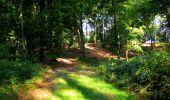 Randonnée Marche LONGPONT - en forêt de Retz_39_Longpont_Villers-Cotterets_AR - Photo 4