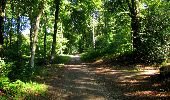 Randonnée Marche LONGPONT - en forêt de Retz_39_Longpont_Villers-Cotterets_AR - Photo 71