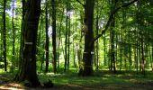 Randonnée Marche LONGPONT - en forêt de Retz_39_Longpont_Villers-Cotterets_AR - Photo 59
