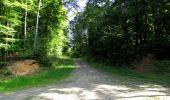 Randonnée Marche LONGPONT - en forêt de Retz_39_Longpont_Villers-Cotterets_AR - Photo 158