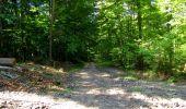 Randonnée Marche LONGPONT - en forêt de Retz_39_Longpont_Villers-Cotterets_AR - Photo 152