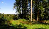 Randonnée Marche LONGPONT - en forêt de Retz_39_Longpont_Villers-Cotterets_AR - Photo 168