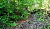 Randonnée Marche LONGPONT - en forêt de Retz_39_Longpont_Villers-Cotterets_AR - Photo 164