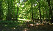Randonnée Marche LONGPONT - en forêt de Retz_39_Longpont_Villers-Cotterets_AR - Photo 220