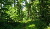 Randonnée Marche LONGPONT - en forêt de Retz_39_Longpont_Villers-Cotterets_AR - Photo 42