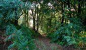 Randonnée Marche LONGPONT - en forêt de Retz_39_Longpont_Villers-Cotterets_AR - Photo 6