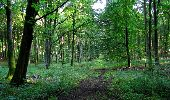 Randonnée Marche LONGPONT - en forêt de Retz_39_Longpont_Villers-Cotterets_AR - Photo 13