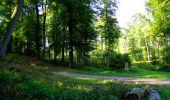 Randonnée Marche LONGPONT - en forêt de Retz_39_Longpont_Villers-Cotterets_AR - Photo 23
