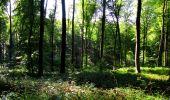 Randonnée Marche LONGPONT - en forêt de Retz_39_Longpont_Villers-Cotterets_AR - Photo 51