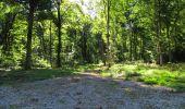 Randonnée Marche LONGPONT - en forêt de Retz_39_Longpont_Villers-Cotterets_AR - Photo 210