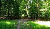 Randonnée Marche LONGPONT - en forêt de Retz_39_Longpont_Villers-Cotterets_AR - Photo 146