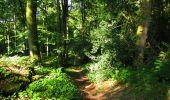 Randonnée Marche LONGPONT - en forêt de Retz_39_Longpont_Villers-Cotterets_AR - Photo 72