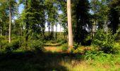 Randonnée Marche LONGPONT - en forêt de Retz_39_Longpont_Villers-Cotterets_AR - Photo 189