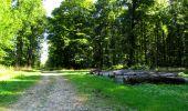 Randonnée Marche LONGPONT - en forêt de Retz_39_Longpont_Villers-Cotterets_AR - Photo 187