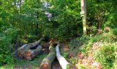 Randonnée Marche LONGPONT - en forêt de Retz_39_Longpont_Villers-Cotterets_AR - Photo 30