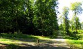 Randonnée Marche LONGPONT - en forêt de Retz_39_Longpont_Villers-Cotterets_AR - Photo 191