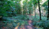 Randonnée Marche LONGPONT - en forêt de Retz_39_Longpont_Villers-Cotterets_AR - Photo 11