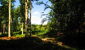 Randonnée Marche LONGPONT - en forêt de Retz_39_Longpont_Villers-Cotterets_AR - Photo 134