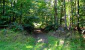 Randonnée Marche LONGPONT - en forêt de Retz_39_Longpont_Villers-Cotterets_AR - Photo 159