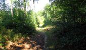 Randonnée Marche LONGPONT - en forêt de Retz_39_Longpont_Villers-Cotterets_AR - Photo 130