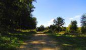 Randonnée Marche LONGPONT - en forêt de Retz_39_Longpont_Villers-Cotterets_AR - Photo 169